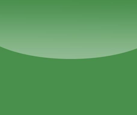 DL155 Grasgrün