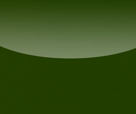 DL187 Militärgrün