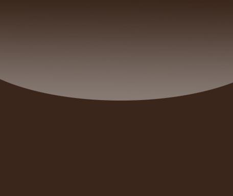 DL230 Dunkelbraun