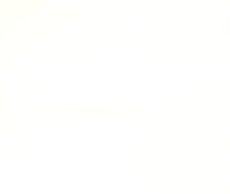 Lackspanndecken Folienbreite 500 cm