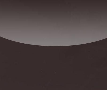 Spanndecken und Lackspanndecken dunkelbraun