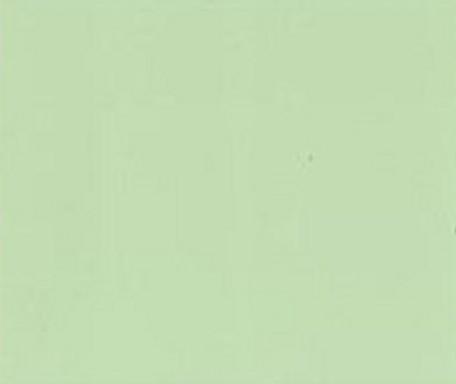DM406 Lindgrün matt geprägt