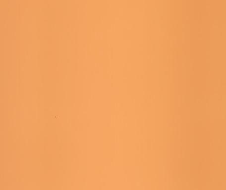 DM409 Cremerosa matt geprägt
