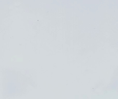 DM355 Hellblau ungeprägt