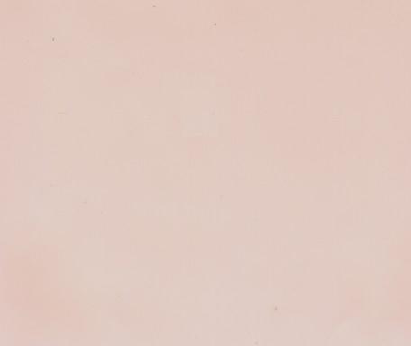 DM356 Hellrosa ungeprägt