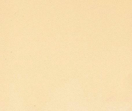 DM383 Pfirsich geprägt